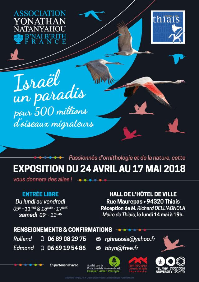 Exposition ISRAEL : UN PARADIS POUR 500 MILLIONS D'OISEAUX MIGRATEURS
