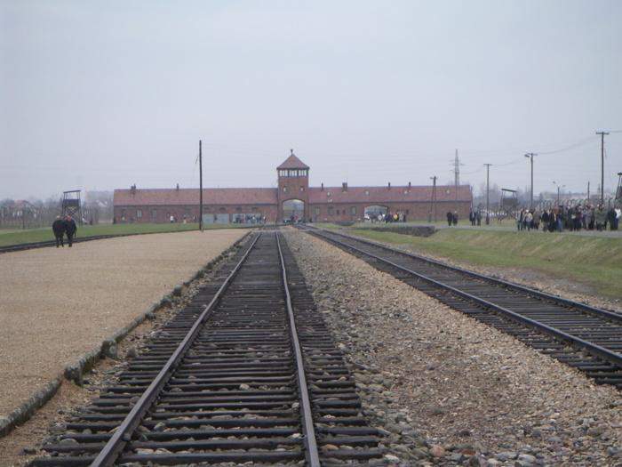 Le 27 janvier 2014, pour le 69ème anniversaire de la libération d'Auschwitz-Birkenau, assemblée internationale de la Knesset à Oświęcim (Auschwitz) et à Cracovie.