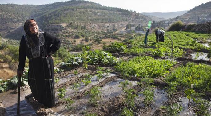 Le B'nai B'rith France condamne la décision de l'UNESCO de classer le paysage au sud de Jérusalem «patrimoine mondial en péril»