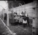 Cérémonie du dévoilement d'une plaque commémorative à la mémoire de 15 enfants Juifs déportés